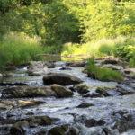 Der Lieserpfad – Einer der schönsten Wanderwege der Eifel