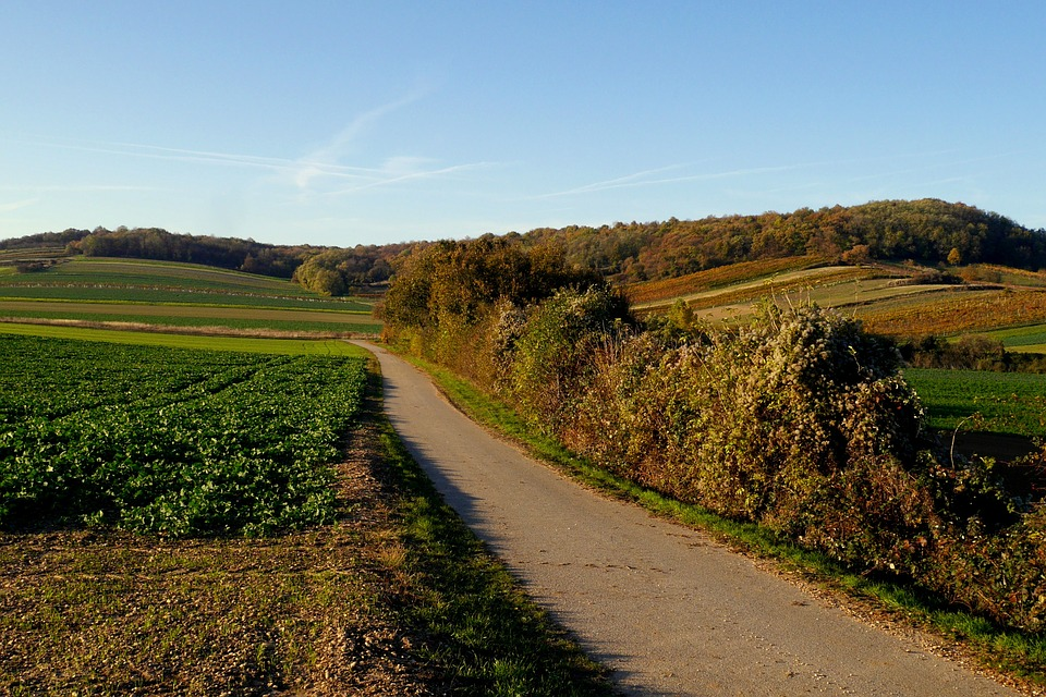 Wandern im Burgenland: Photo by Vikino, CC0 Public Domain (CC0 1.0)