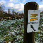 Der Moselsteig – 365 km pure Freude